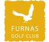 Furnas logo